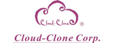 Cloud Clone Logo Fn